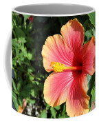 Sunlit Beauty Coffee Mug