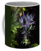 Sunlit Bloom Of Alpine Sea Holly Coffee Mug