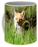 Sunlit Face Coffee Mug