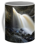 Sunlit Falls Coffee Mug