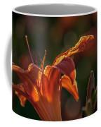 Sunlit Lilly Coffee Mug