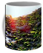 Sunlit Stones Coffee Mug