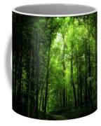 Sunlit Woodland Path Coffee Mug by Lars Lentz