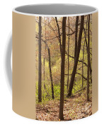 Sunlit Woods Coffee Mug