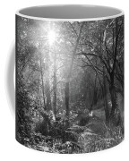 Sunlit Woods, West Dipton Burn Coffee Mug