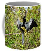 Sunning Anhingas Bird One Coffee Mug