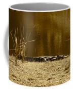 Sunning Gator Coffee Mug