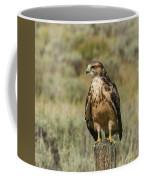 Sunning In The Afternoon Coffee Mug