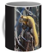 Sunning Squirrel Coffee Mug