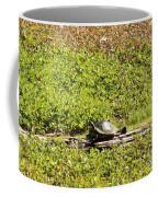 Sunning Turtle In Swamp Coffee Mug