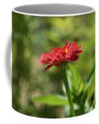 Sunning Zinnia Coffee Mug