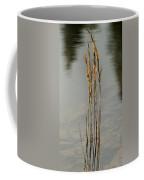 Sunny Reeds Reflect Coffee Mug