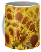 Sunny Sunflower Sunset Coffee Mug