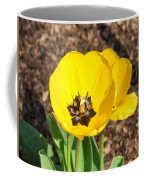 Sunny Yellow Tulips Coffee Mug