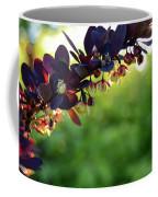 Sunrays With Blooms Coffee Mug