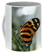 Sunrise Butterfly Coffee Mug