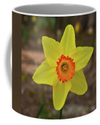 Sunrise Daffodil Coffee Mug