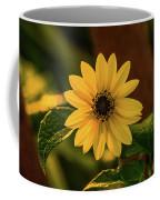 Sunrise Daisy Delray Beach Florida Coffee Mug