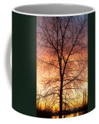 Sunrise December 16th 2010 Coffee Mug by James BO  Insogna