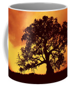 Sunrise Gum Coffee Mug