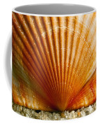 Sunrise On Shell Coffee Mug