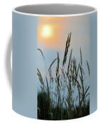 Sunrise Over Grass Coffee Mug