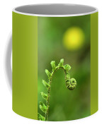Sunrise Spiral Fern Coffee Mug