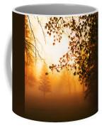 Sunrise Trees Fog Coffee Mug