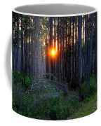 Sunset Along The Florida Trail - St.marks Coffee Mug