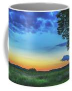 Sunset And Flowers Coffee Mug