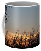 Sunset And Palm Grass Coffee Mug