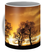 Sunset At Redhill Coffee Mug
