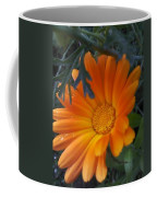 Sunset Daisy Coffee Mug