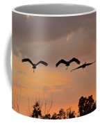 Sunset Fly Over Coffee Mug