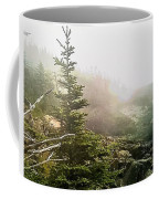 Sunset In The Pine Forest Coffee Mug