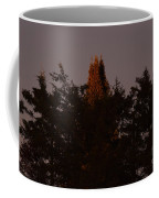 Sunset Light Coffee Mug