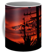 Sunset On Socal Suburb Coffee Mug