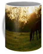 Sunset Over A Spring Meadow Coffee Mug