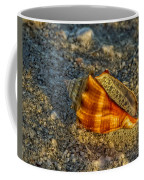 Sunset Seashell Coffee Mug