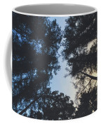 Sunset Shadows Coffee Mug