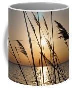 Sunset Through The Dune Grass Coffee Mug