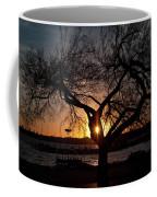 Sunset Through The Tree Coffee Mug