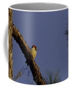 Sunset Tranquility Coffee Mug