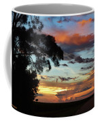 Sunset Tree Florida Coffee Mug
