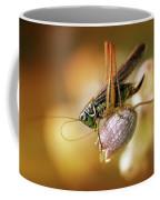 Sunset With A Big Grasshoper Coffee Mug