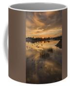 Sunset With Pigeons Coffee Mug