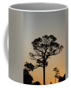 Sunsetting Trees Coffee Mug
