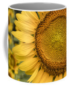 Sunshine Flower Coffee Mug