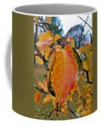 Sunshine In The Rain Coffee Mug