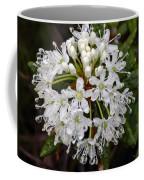 Sunshine On A Rainy Day Coffee Mug